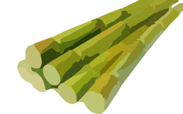 Green Polythene