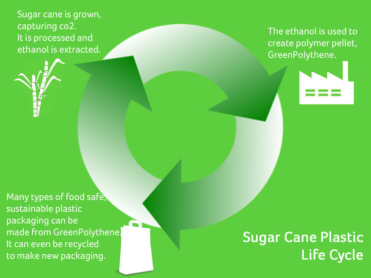 Sugar Cane Plastic Life Cycle